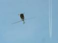 Donau-Symposium Hubschrauber beim Looping / Zum Vergrößern auf das Bild klicken