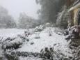 Bruno Hersche / Schnee am 5. Mai 2019 / Zum Vergrößern auf das Bild klicken